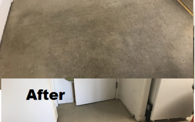Doctor Fabric Carpet Cleaning