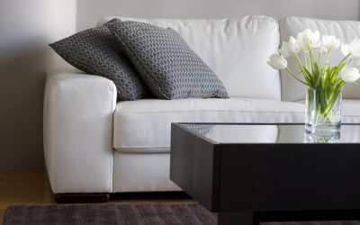Furniture Cleaning Service in Somerset County